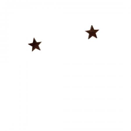 CM_BO_STAR_WOOD_01